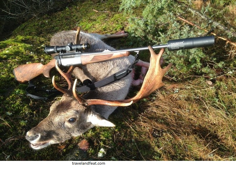 Advice on the use of hunting weapons